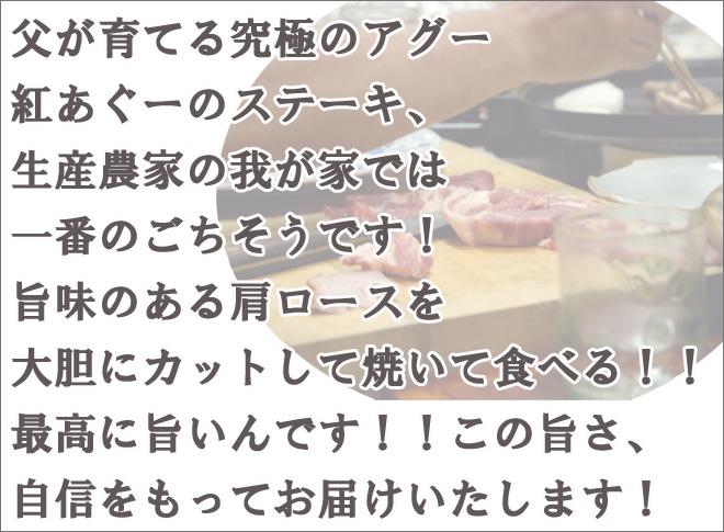 肉の日紅あぐーステーキ