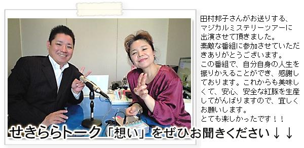 マジカルミステリーツアー �がんじゅう 代表取締役 桃原清一郎